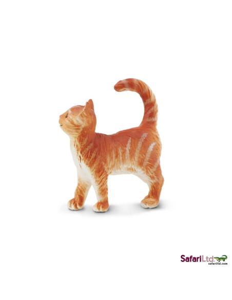 Mourovatá kočka