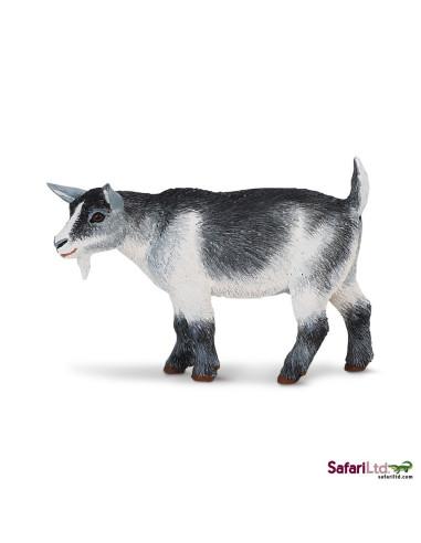 Koza trpasličí