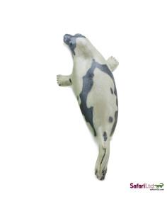 Tučňák na kolečkách