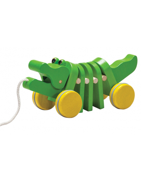 Dancing Alligator