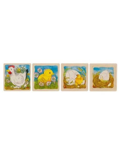 Puzzle, Chicken