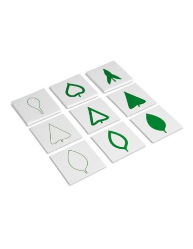 Nienhuis - Leaf Cards
