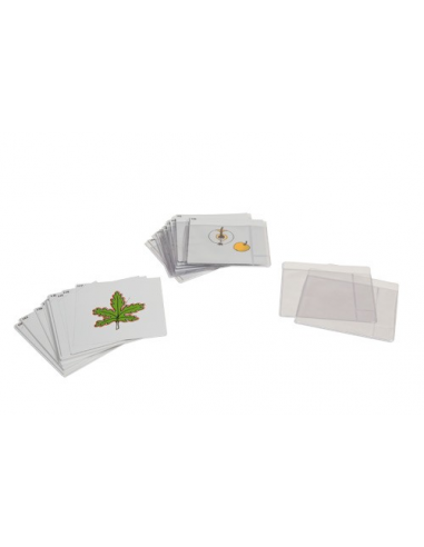 Nienhuis - Třetí sada botanických karet