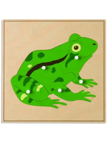Nienhuis - Puzzle – žába