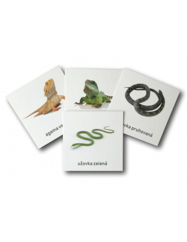 Třísložkové karty - Hadi a ještěři (zalaminované)