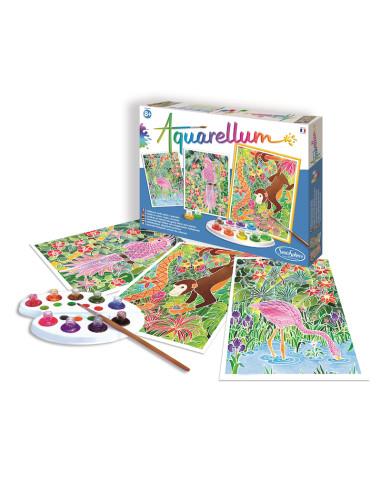 Watercolours - Amazon