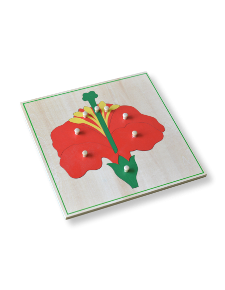 3 Botany Puzzles With Cabinet
