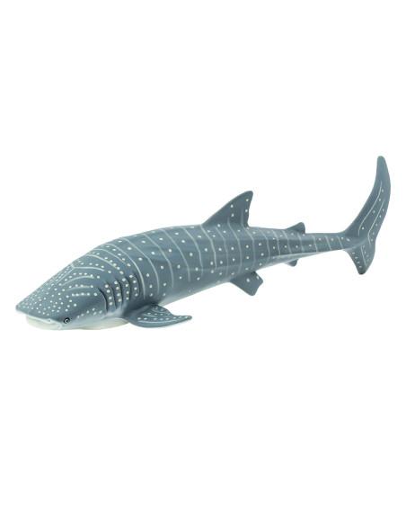 Žralok obrovský