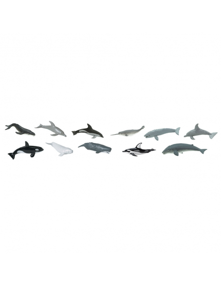 TOOB - Whales & Dolphins