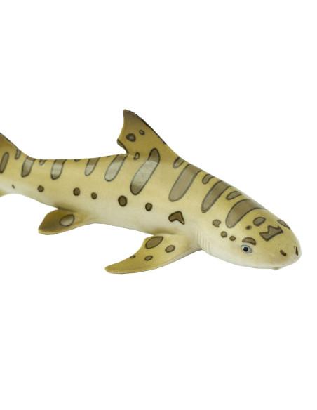 Žralok leopardí