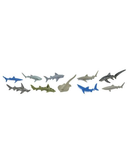 Tuba - Žraloci