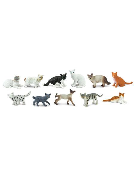 TOOB - Domestic Cats