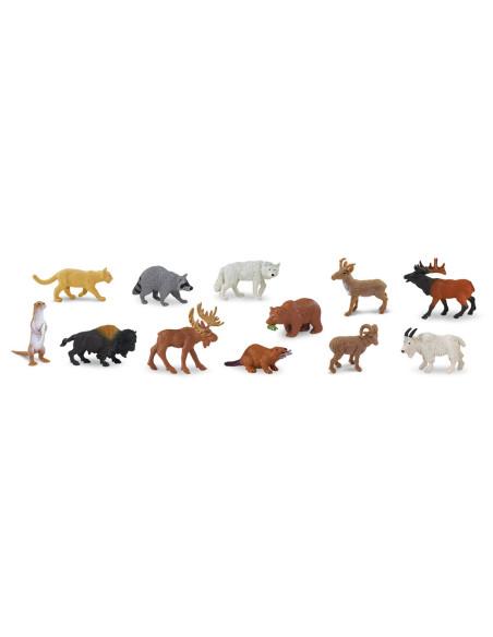 Tuba - Zvířata Severní Ameriky