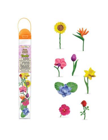 Tuba - Květiny