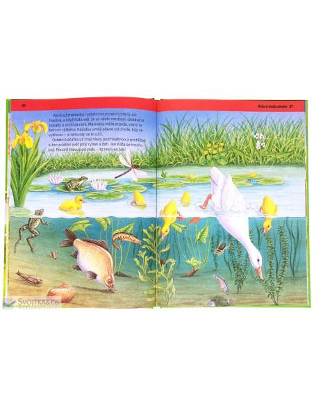 Odvážná zvířátka- Kniha plná příběhů, odvahy a dobrodružství