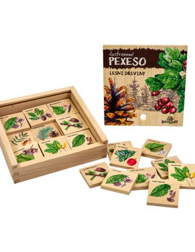 Pexeso klasické - Lesní dřeviny