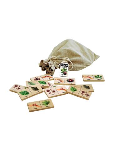 Edukační Domino - Lesní dřeviny